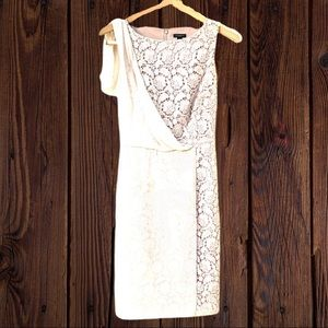 Ann Taylor Lace Floral Dress With Lace Overlay